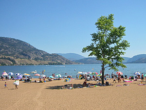 Goldener Strand am Okanagan Lake