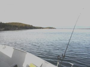 yellowknife angeln graham lake