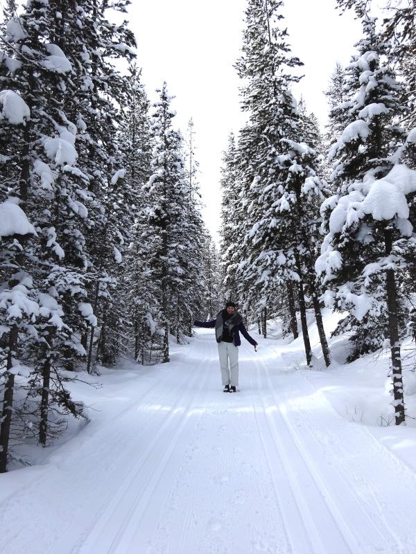 Winterurlaub Kanada - Winter Westkanada