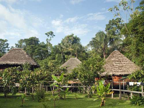 Unterkunft im Dschungel