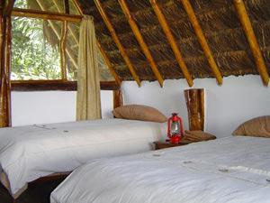 Lodge im Dschungel