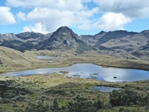 Aussicht bei der Fahrt durch den El Cajas Nationalpark
