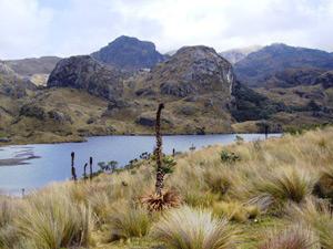 El Cajas Nationalpark bei Cuenca