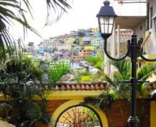 Kakao-Erlebnis & Küstenmetropole Guayaquil