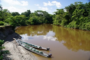 Mit Holzkanus geht es in den Dschungel bei Cuyabeno