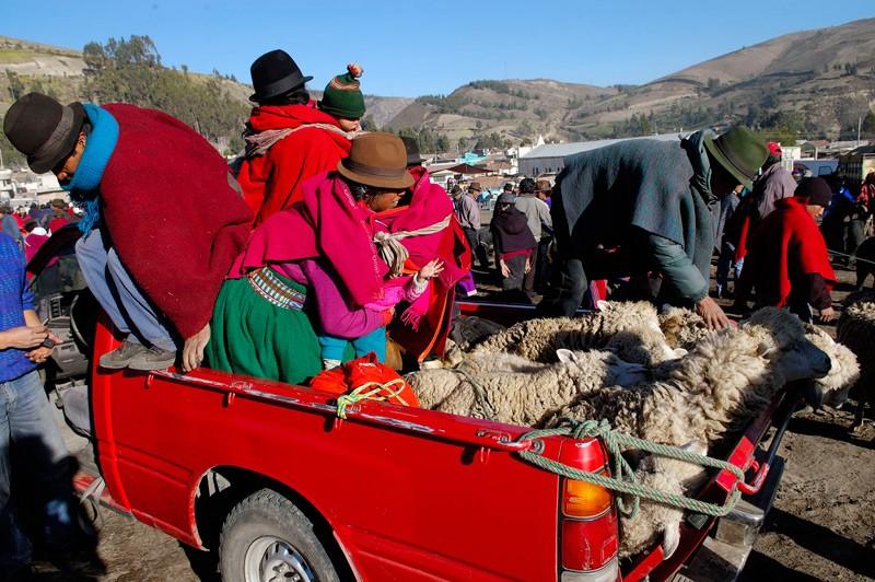 Indios unterwegs zum Markt