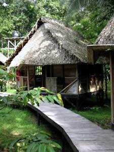 Bei 3 Wochen Ecuador haben Sie Zeit für einen Abstecher in den Dschungel