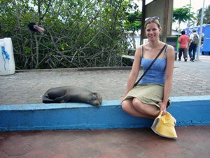 seehund-hafen-galapagos rundreise