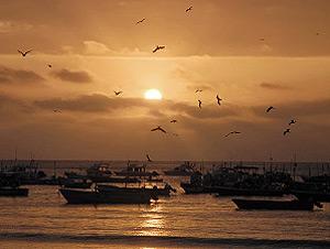 Sonnenuntergang in Puerto Lopez