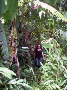 im Dschungel bei Tena unterwegs