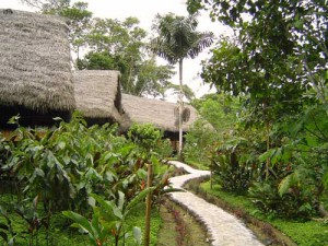 Dschungellodge in Tena