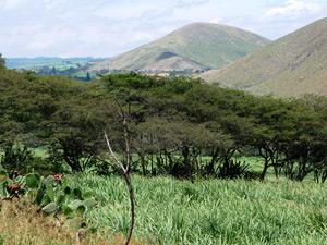 Umgebung in Ibarra