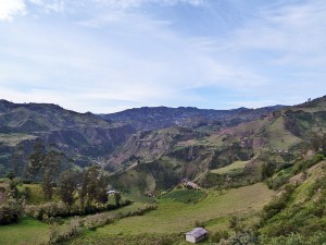 Grüne Umgebung der Anden