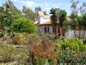 Ibarra – Aktiv entspannt auf der Hazienda