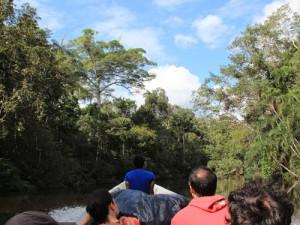 Boot im ecuadorianischem Dschungel bei Tena
