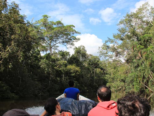 Boot im Dschungel von Tena