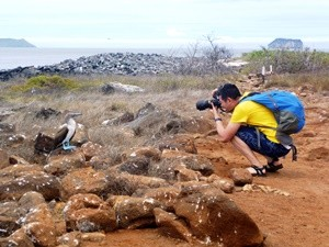 fotograf-vogel-galapagos-kreuzfahrt