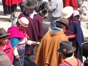 Otavalo Markt Ecuador Highlights