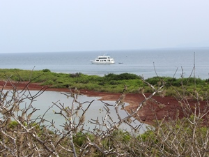 Kreuzfahrt auf den Galapagosinseln
