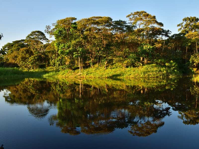 Ecuador Rundreise Regenwald Puyo