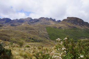 Berge und Sträucher im Nationalpark Cajas