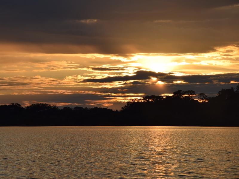 Sonnenuntergang im Dschungel