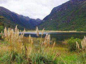Cajas Nationalpark: Lagunen, Schilfgras und Berge