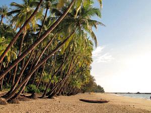 Ngapali palmenstrand
