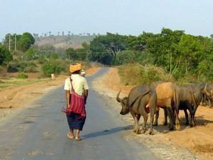 Rondreizen in Birma