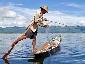 Birma reizen, beenroeier