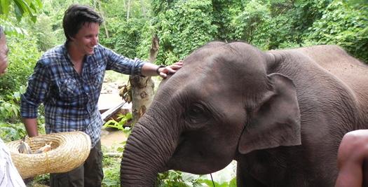 Myanmar rondreis olifant