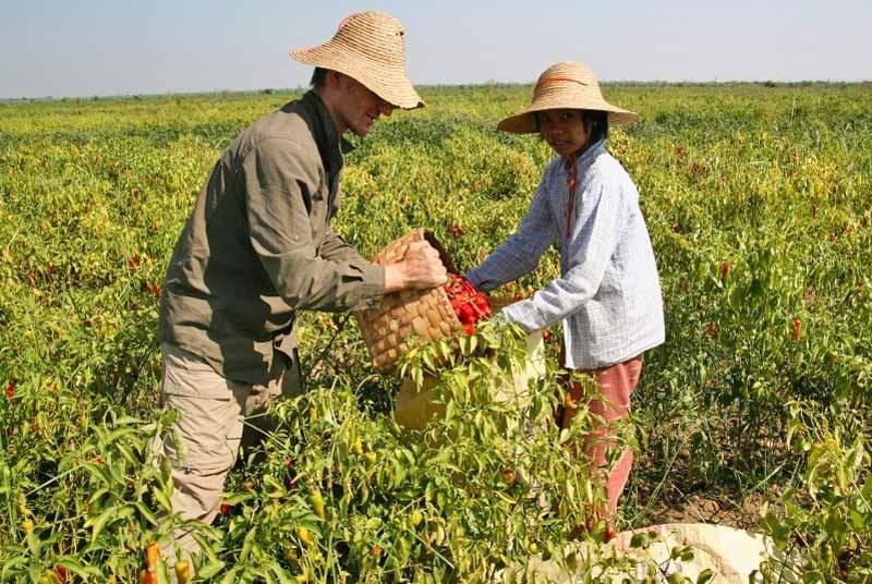Pepers Myanmar vakantie
