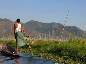 Myanmar-reis-local
