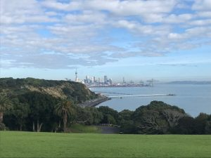 Auckland Sykline