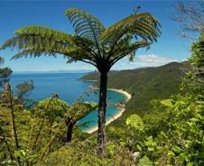 Südseeflair im Abel Tasman