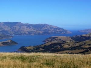 Neuseeland-Südinsel-akaroa-landschaft