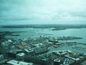 Aussicht auf die Harbour Bridge und den Hafen