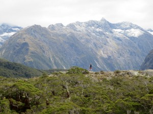Neuseeland-milford-sound-ausblick