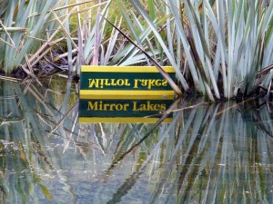 Südinsel Neuseelands: Mirror Lakes im Milford Sound