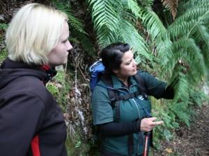 Neuseeland-rotorua-farn-guide-Wanderung