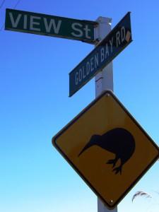 stewart-island-kiwi-schild