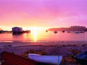 Am Strand von Stewart Island © Venture Southland