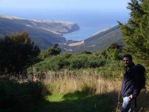 Blick auf die Küste der Südinsel