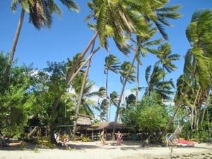 Palmenstrand der Coral Coast auf Fiji