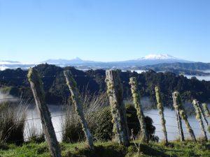 Ausblick über die Whanganui Region bis zum Tongariro