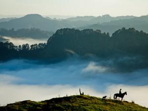 Wälder und Hügel im Nebel