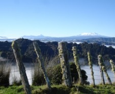 Mit dem Kajak auf dem Whanganui River