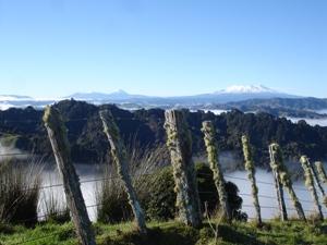 Ausblick über die Whanganui Region