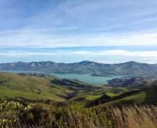 Entspannte Tage in Akaroa