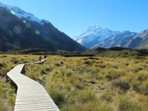 Steg auf dem Weg Richtung Hooker-Gletscher am Mount Cook
